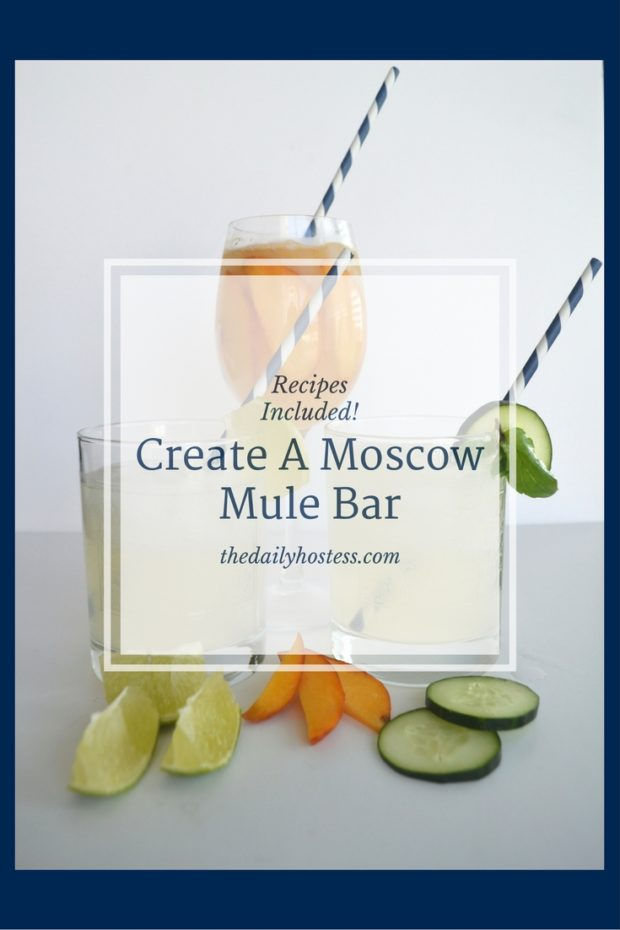 Pinterest Graphic-Moscow Mule Bar
