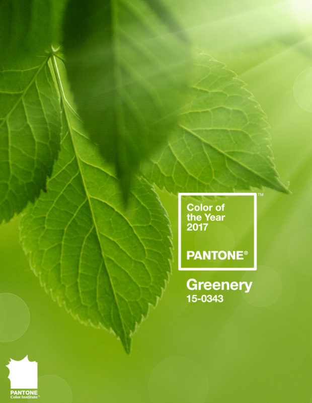 Use the Pantone Color of the Year Greenery for a Party Color Scheme