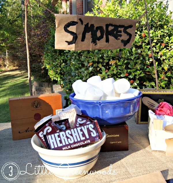 Summer party themes, camping sleepover birthday party, camping party, smore's backyard party