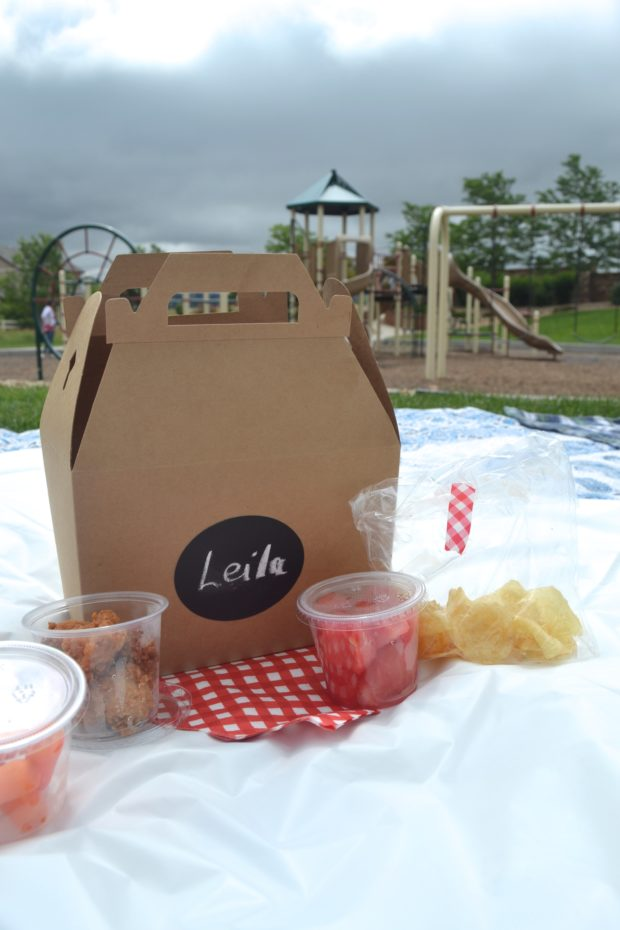 Picnic party birthday, picnic party with lunch boxes and red gingham, park playdate picnic birthday party